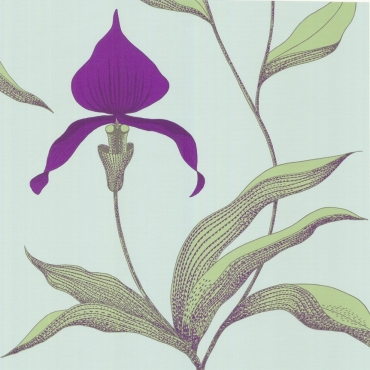 Cole_Son_-_New_Contemporary_-_Orchid_66-4027_5